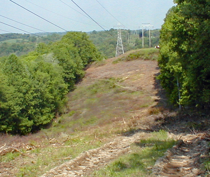 Power line right-of-way in 2004